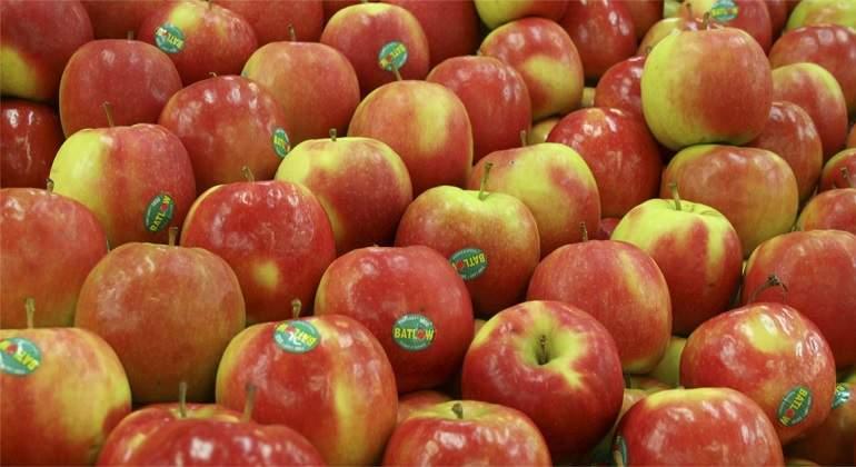 manzanas-archivo.jpg