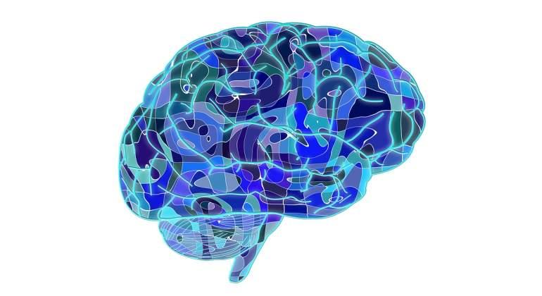 Cerebro-Pixabay.jpg