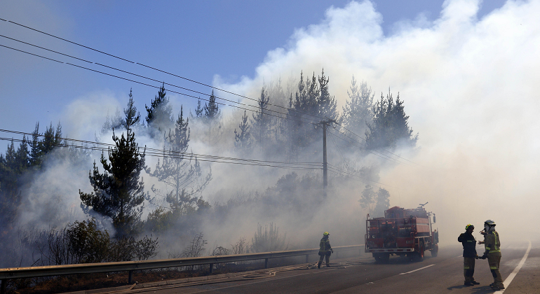 incendio-forestal-chile-archivo.png