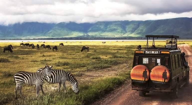tanzania-safari-dreamstime.jpg