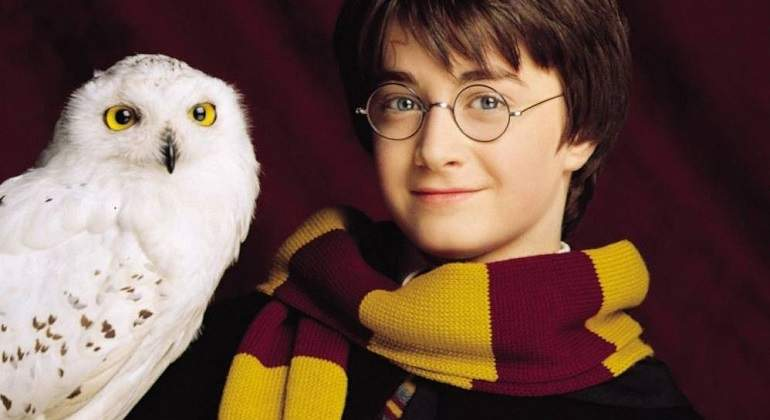 Harry-Potter-y-su-lechuza-Hedwig