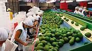 El alza del SMI fulmina el empleo en Murcia, Asturias y Extremadura