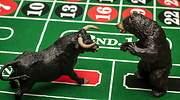 alcistas-bajistas-bolsa-casino-dreams.jpg