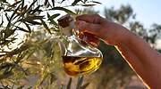 Este es el mejor aceite de oliva virgen extra, según el Ministerio de Agricultura: precio y dónde comprarlo