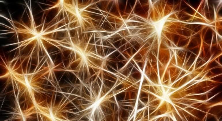 Crean una neurona artificial que podría ayudar a caminar tras una ...