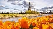 Acuerdo de promoción: Holanda, Tierra de agua