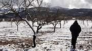 nieve-agricultura-cultivos-helados-reuters.jpg