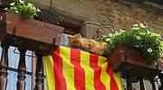 cataluna-balcon-gato.jpg