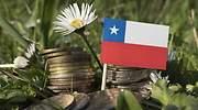 Una bandera de Chile entre hierba verde y una flor