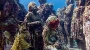 museo-subacuatico.jpg