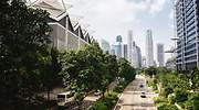 avenida-verde-ciudad-sostenible.jpg