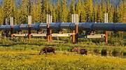 El peak oil de Alaska se agrava y la producción de petróleo cae a mínimos de 1976