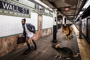 Nueva York, pasto de las ratas