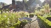jardineria-formas-de-disfrutarla.jpg