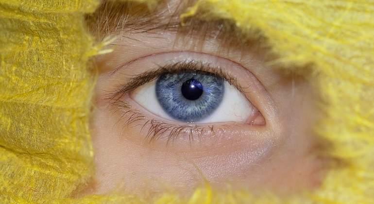 ojo-humano-pixabay.jpg