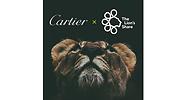 cartier-archivo.gentileza.cartier.png