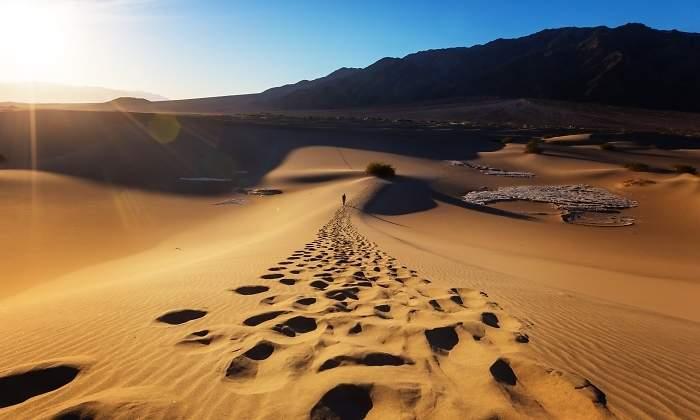 Desertizacion yahoo dating