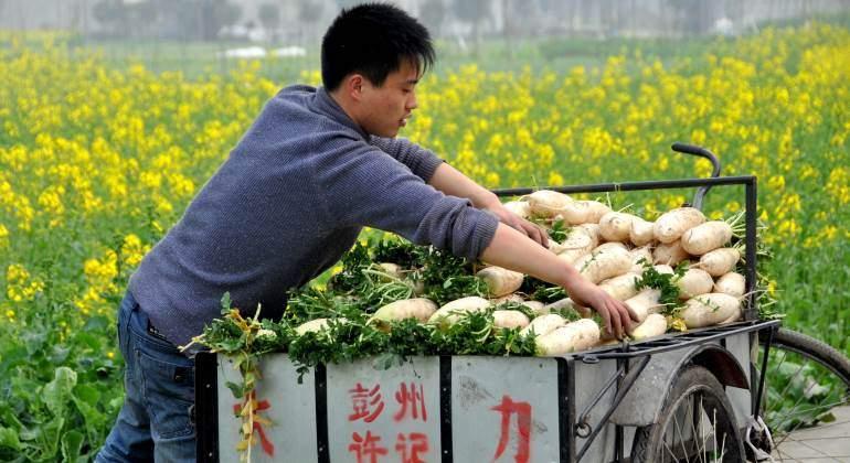 agricultor-chino-770-dreamstime.jpg