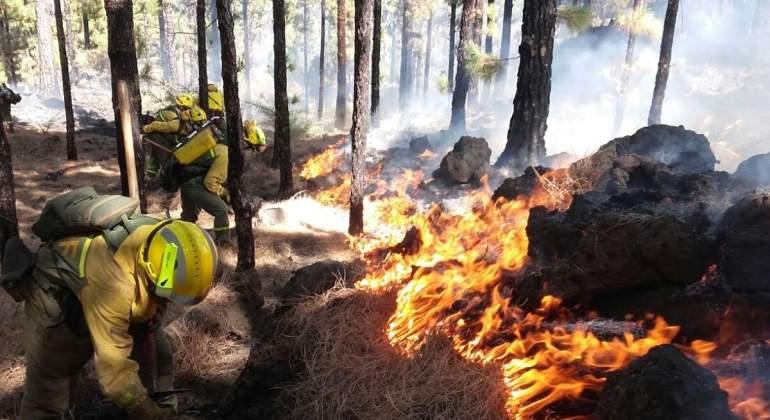 incendioforestal-efe.jpg