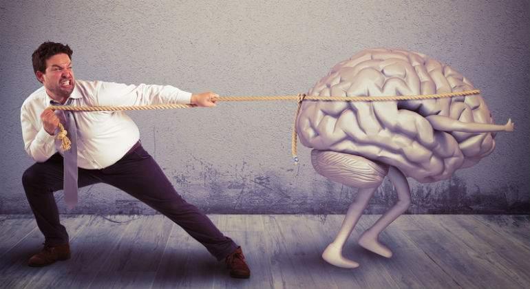 cerebro-dreamstime.jpg