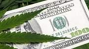 Invertir en cannabis: los pros y los contras de llevar marihuana en nuestra cartera