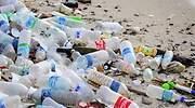 contaminantes-plasticos-770.jpg