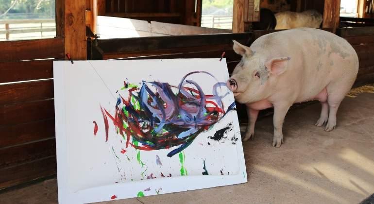 La cerda artista, Pigcasso posa junto a una de sus obras en el refugio en el que vive.