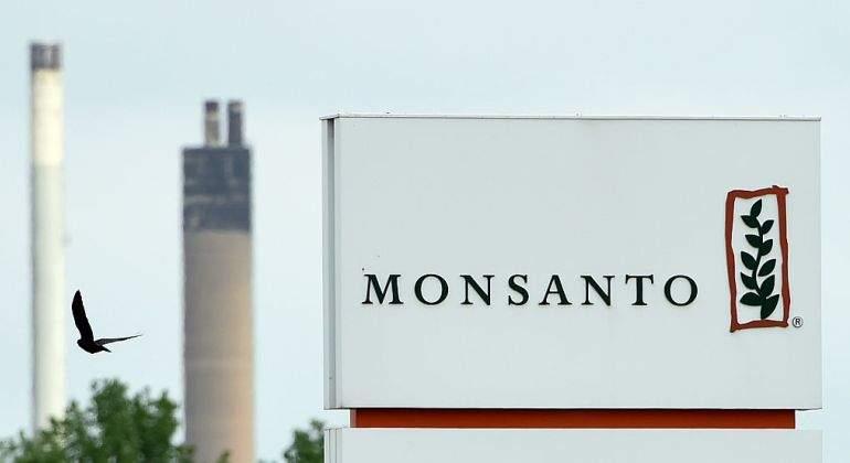 Bayer no quiere mancharse con los transgénicos y estudia acabar con la marca Monsanto