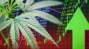 marihuana-cannabis-bolsa-coronavirus-770-420.jpg