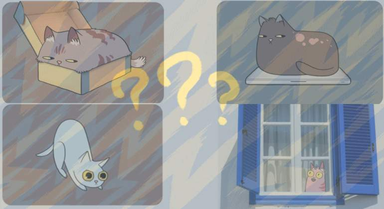 gatoooos.jpg