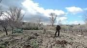 agricultura-ep.jpg