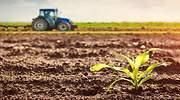 A la espera de China, los fertilizantes de Nutrien siguen baratos