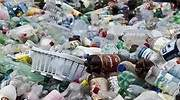 Cuidar el medio ambiente, la principal preocupación de las empresas que apuestan por la economía circular