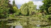 770x420-jardines-monet-francia-dreamstime.jpg