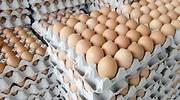 huevos-marrones-dreamstime.jpg