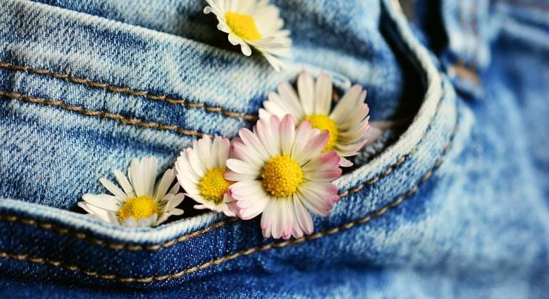 Vaqueros-flores-Pixabay.jpg