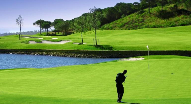 golf770.jpg