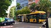 buses-canarias.jpg