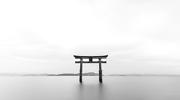 Valor imprescindible para una cartera (VII): Murata