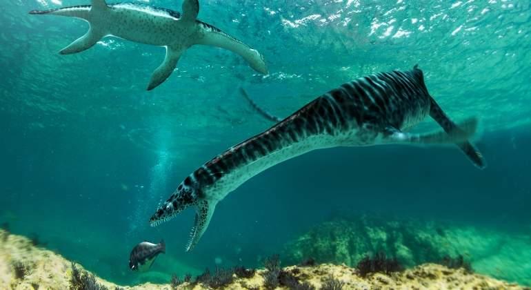 plesiosaurio-castellon-sinc.jpg