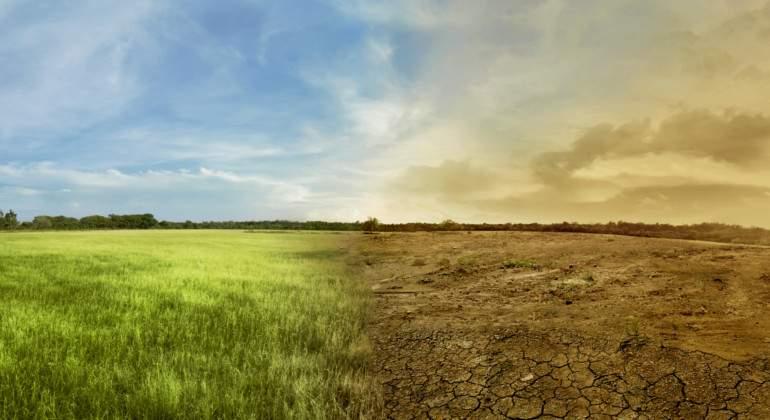 Extincion-bosques.jpg
