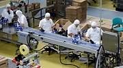 fabrica alimentosjpg