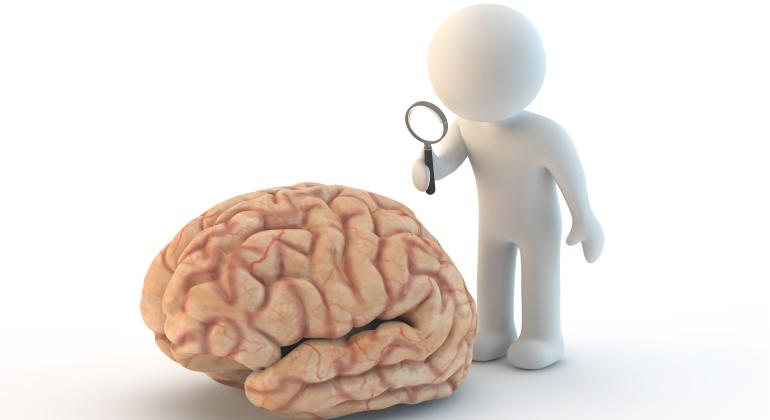 Día Mundial del Cerebro: 9 consejos para mantenerlo joven - elEconomista.es