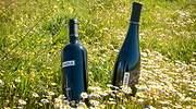 770x420-bodegas-habla-botella-vino-n18.jpg
