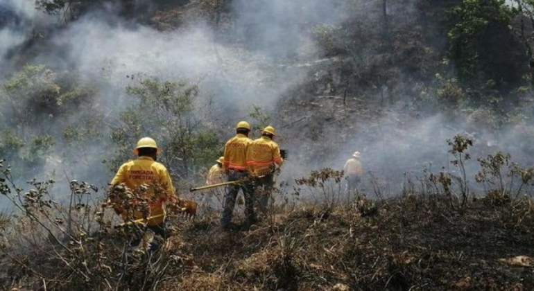 incendios-forestales-mexico-proteccion-civil.jpg