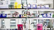 laboratorio-moderna-bloomberg.jpg