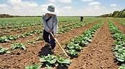 agricultura_770x420.jpg