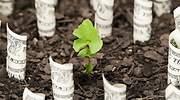 inversion-sostenible-brote-verde-billetes-dolar-getty-770x420.jpg