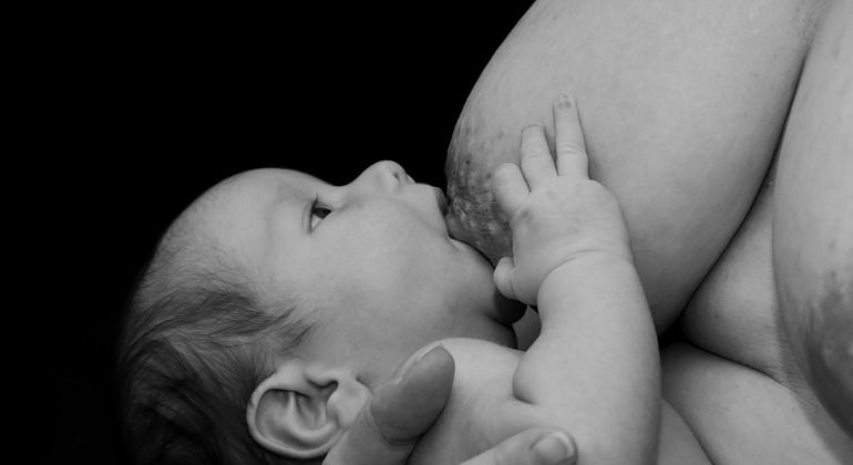 Interrumpir la lactancia condiciona la aparici�n del c�ncer de mama