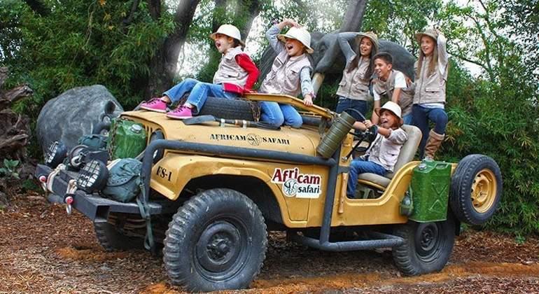 Resultado de imagen para africam safari